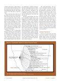 Sonoran Desert Network Weavers - Page 7