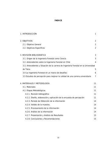 iii ÍNDICE 1. INTRODUCCIÓN 1 2. OBJETIVOS 2 2.1. Objetivo ...
