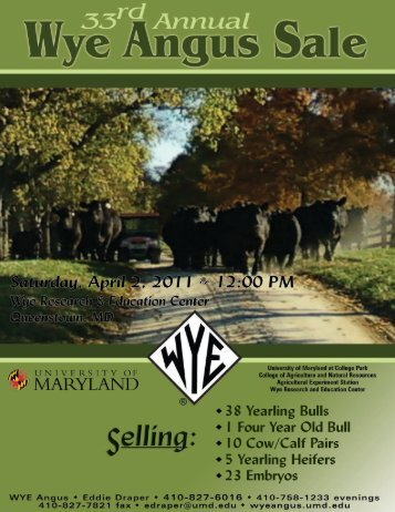 33rd Annual WYE Angus Sale - Brubaker Sales and Marketing