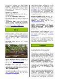 8/2010 - Salon kaupunki - Page 3