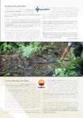 dependencia-petrolera - Page 5