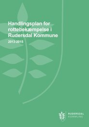 Handlingsplan for rottebekæmpelse i Rudersdal Kommune