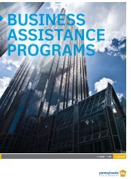 Business Assistant Program - Indiana County Center for Economic ...