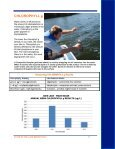 JOES LAKE - Mississippi Valley Conservation - Page 7