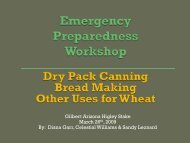 Drypack Canning, Bread Making, Other Uses for Wheat - I Will Prepare