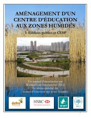 DEVELOPING A WETLAND CENTRE… - Wetland Link International