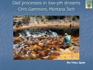 Diel processes in low-pH streams