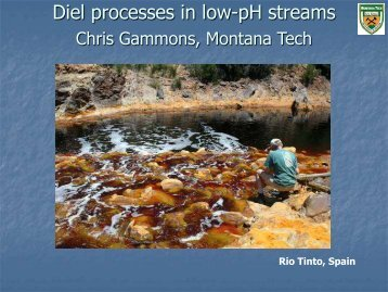 Diel processes in low-pH streams