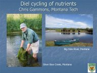 Diel cycling of nutrients