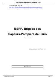BSPP, Brigade des Sapeurs-Pompiers de Paris - aaspp91