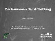 Mechanismen der Artbildung - Goethe-Universität