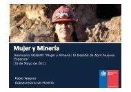 Mujer y Minería [Modo de compatibilidad] - Sonami