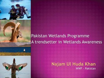 Najam Ul Huda Khan - Wetland Link International