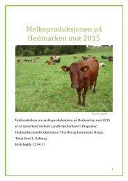 sluttrapport meldk.pdf - Ringsaker kommune
