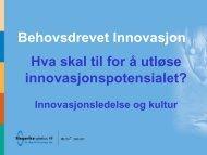 Hva skal til for å utløse innovasjonspotensialet? - Innomed