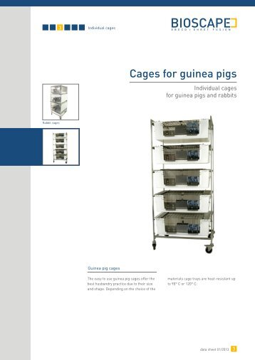Cages for guinea pigs