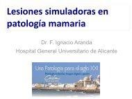 Lesiones simuladoras en patología mamaria
