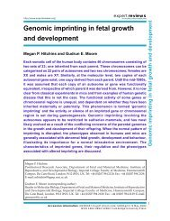 Genomic imprinting in fetal growth and development