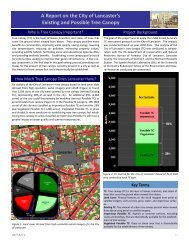 Urban Tree Canopy Assessment - Save It!