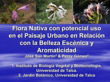 Diapositiva 1 - Universidad de Talca