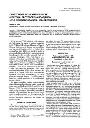 Ophiotaenia ecuadorensis n. sp. (Cestoda: Proteocephalidae) from ...