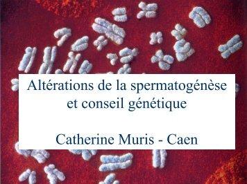 Altérations de la spermatogénèse et conseil ... - CHU de Rouen