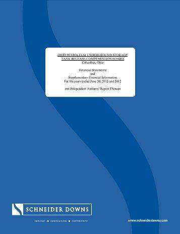 Audited Financial Report - Ohio Petroleum Underground Storage ...