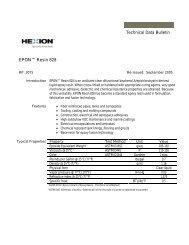 Technical Data Bulletin EPON™ Resin 828 - ChemCenters