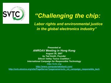 Challenging the chip: Labor rights and environmental ... - Anroev