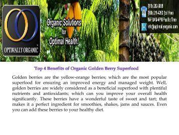 Top 4 Benefits of Organic Golden Berry Superfood.pdf