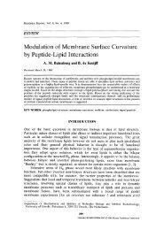 Modulation of membrane surface curvature by peptide-lipid ...