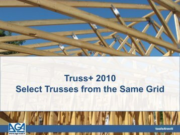 Truss+ 2010 Select Trusses from the Same Grid