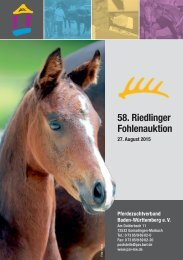 58. Riedlinger Fohlenauktion am 27. August 2015