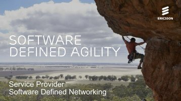 defined Agility