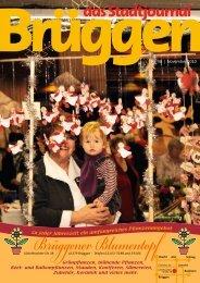 Nr. 38 | November 2010 - Stadtjournal Brüggen