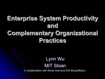 Enterprise System Productivity and Complementary Organizational Practices