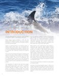 Report on Captive Dolphins - Page 6