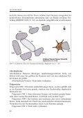 Steingrab als PDF - Nartum - Seite 7