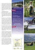 TVProgramm - AKZENT Hotels - Seite 7