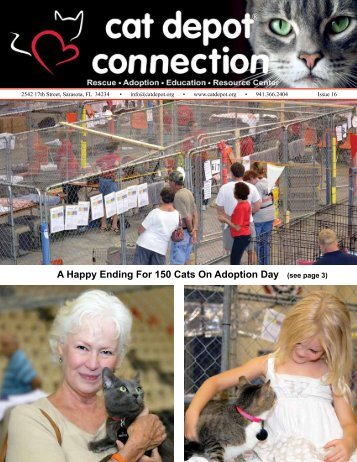 A Happy Ending For 150 Cats On Adoption Day