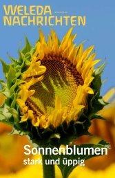Sonnenblumen - Weleda