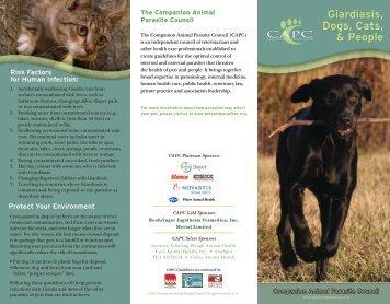 Giardiasis Dogs Cats & People