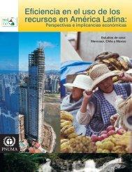 Perspectivas e implicancias económicas - UNEP