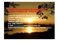 Descargar documento en formato PDF - Red de Iniciativas y ...