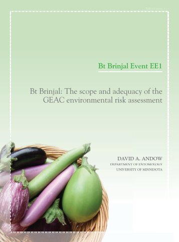 Bt Brinjal The scope and adequacy of the GEAC environmental risk assessment