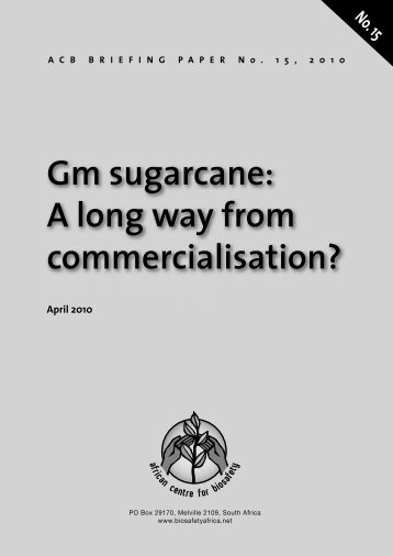 Gm sugarcane A long way from commercialisation?