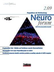 Atem-Stoffwechsel • Nahrungs  - Neurowissenschaftliche Gesellschaft ...