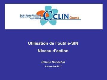 Utilisation de l'outil e-SIN Niveau d'action