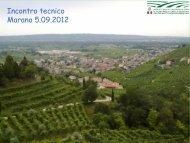 Presentazione ICQRF - Ufficio di Conegliano - Consorzio tutela vini ...