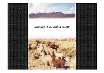 Microsoft PowerPoint - MINKA Alpacas Italiano.pptx - La Bottega ...